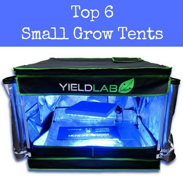 top small grow tents